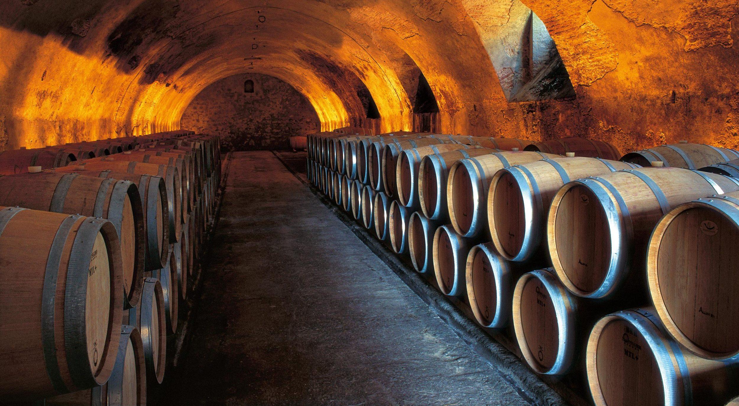 Wine cellar at Tenuta degli Dei.